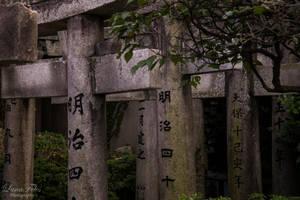 torii. by LunaFeles