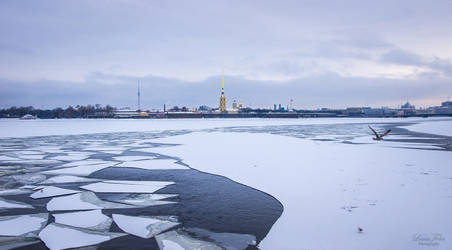 frozen Newa by LunaFeles