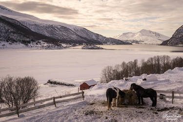 Idyllic Landscape. by LunaFeles