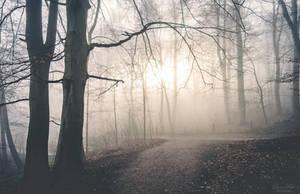 good morning. by LunaFeles
