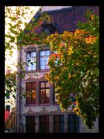 Golden autumn by Jathor