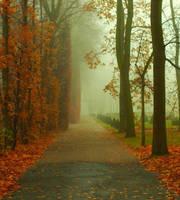 in the fog by HeretyczkaA