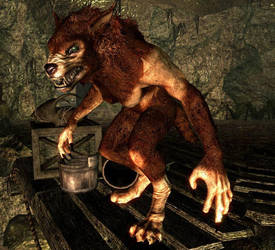 Skyrim Female Werewolf By Bradyrichie On Deviantart