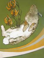 untitled-dead rabbit on green by myodalisque