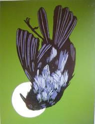 Dead Crow on Green by myodalisque