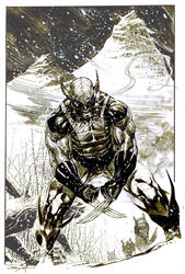 Wolverine in Snow Inkwash by ardian-syaf