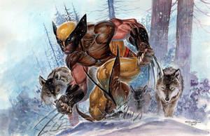 Wolverine by ardian-syaf