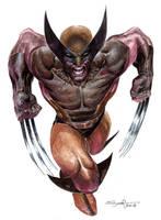 Wolverine Homage by ardian-syaf