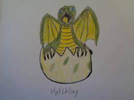 Hatchling by woodywoodwood