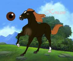 Konani by horsegirl121