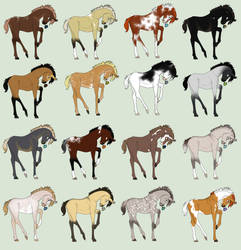 Foal Adopts 1 by horsegirl121