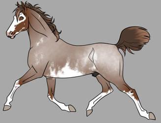 Red Roan Overo Sabino Adopt Open by horsegirl121