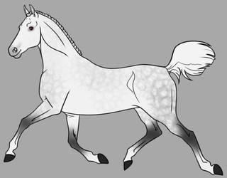 Dapple Gray Adopt Open by horsegirl121