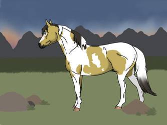 CV | Sunset Stallion | Koda by horsegirl121
