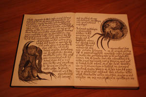 Pages of madness by meroth