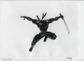 Ninja by C3LTICFURY