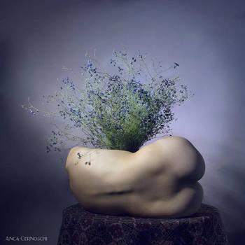 vase by AncaCernoschi