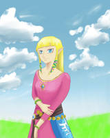 Skyward sword Zelda by Tirilno