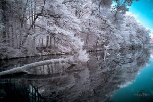 Mirror, Mirror by Creative--Dragon