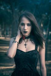 Dark Forest by LordSchiffer