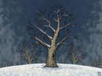 Winter by Jasper-M