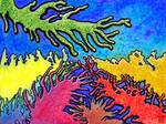 Catchy coral (keurig koraal) by Jasper-M