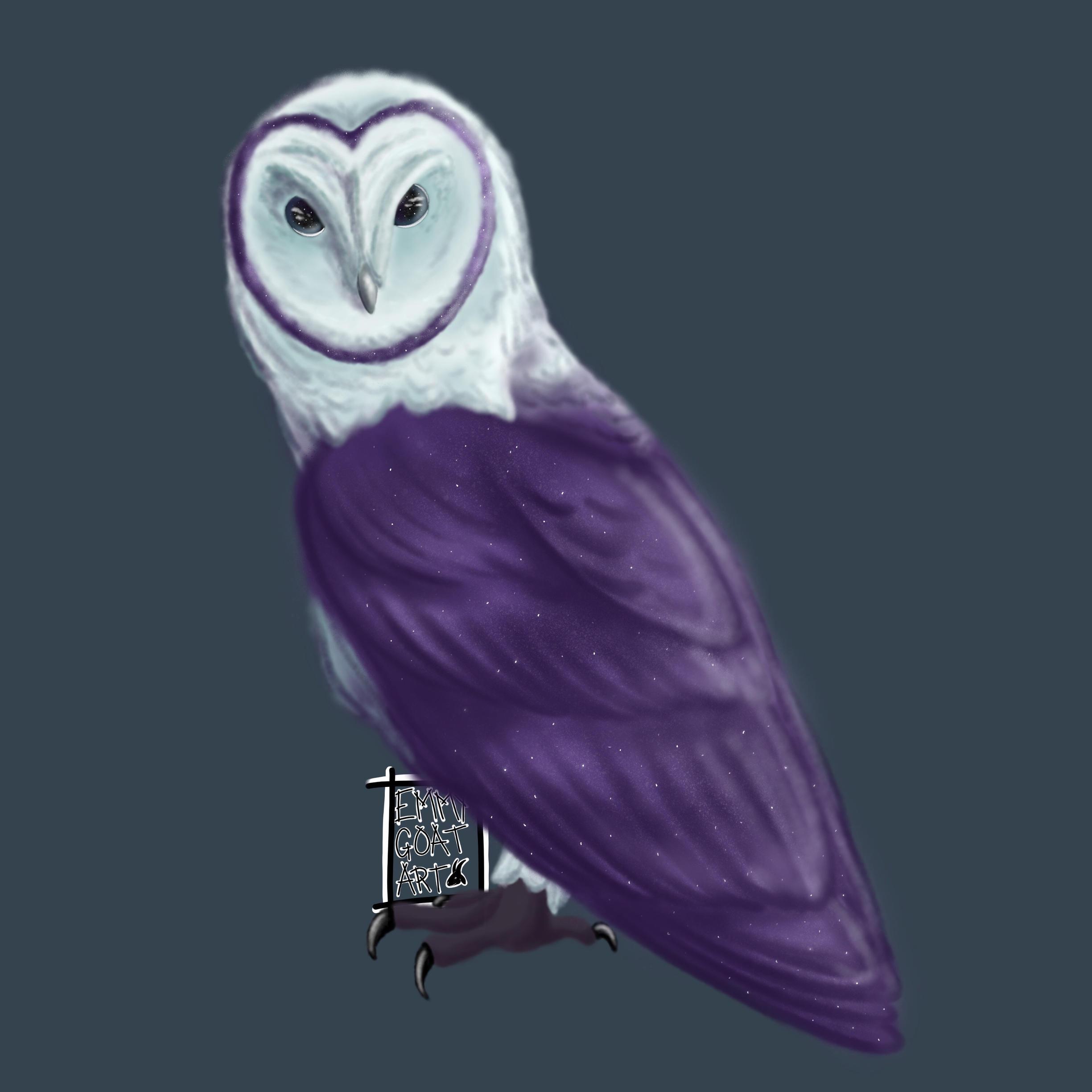 Owl Amazing Art Cosmic
