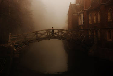 The Mathematical Bridge by Tinsella