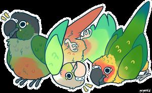 ALL HAIL BIRD ORB by Mynosylexia