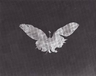 The Patterfly by HeartFullOfWine
