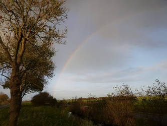 Golden Hour Rainbow by CyranoInk