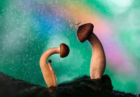 Wonderland by AimishBoy