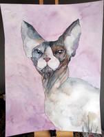 CAT #3 by PanRafik