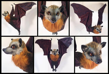 Grey Headed Flying Fox Poseable Art Doll by Blazesnbreezes