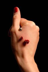 Steel rose VI by Teufelin