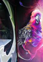 cocorico pirot by shepa