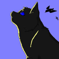 Crowfeather by Moonstreamer