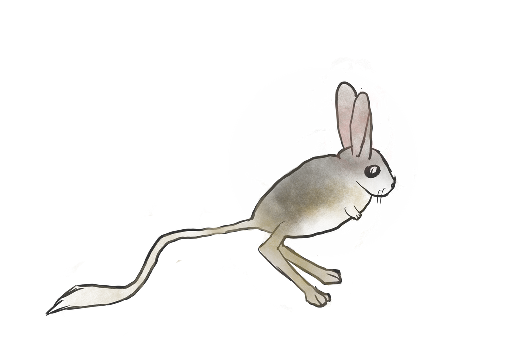 Jerboa by Diagonath