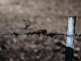 Barbed-Wire by Evillatenighttv