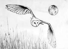 The Flight by skoppio