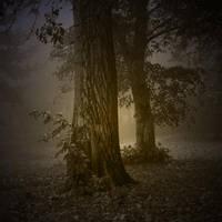 mystic by impatienss