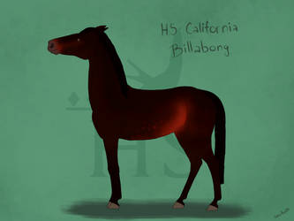 HS California Billabong by SilverFox812