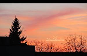 Sunset sky by NelEilis