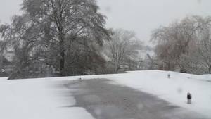 Winter Wasteland 2017 . 3 by Grendelkin