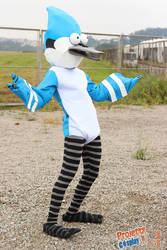 Mordecai Cosplay 2 - Regular Show by Pierrot-sama