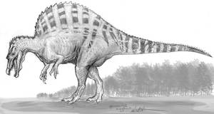 Spinosaurus by Ashere