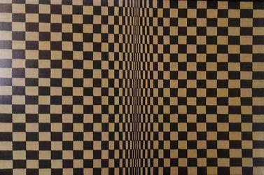 Ilusion Optica Clasica 1 by estevesalberto35