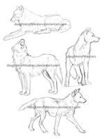 Wolf Sketches 1 by daughterofthestars