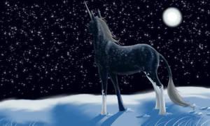 Starstudded Stallion by daughterofthestars
