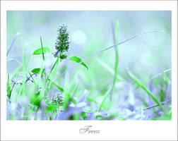 Freez by leo723